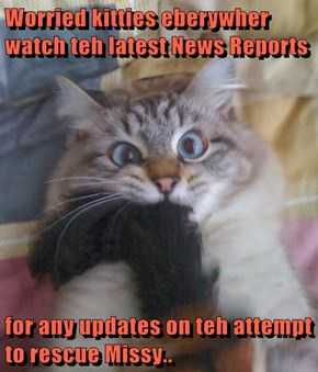 Worried kitties eberywher watch teh latest News Reports  for any updates on teh attempt to rescue Missy..