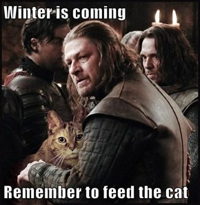 Winter is coming  Remember to feed the cat