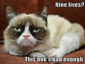 Nine lives?  This one's bad enough.