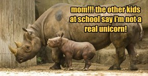 mom!!! the other kids at school say i'm not a real unicorn!