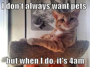 I don't always want pets  but when I do, it's 4am