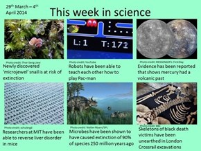 The Last Week in Science