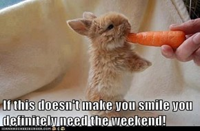 If this doesn't make you smile you definitely need the weekend!