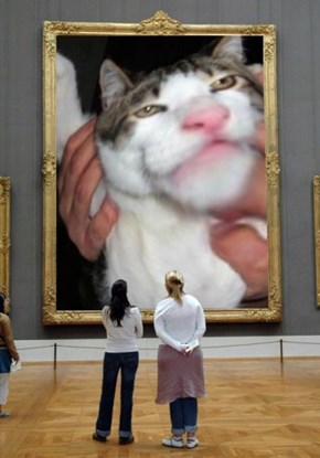 Ugly cat became the masterpiece