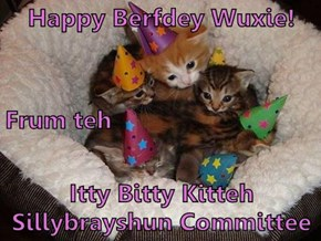 Happy Berfdey Wuxie! Frum teh Itty Bitty Kitteh Sillybrayshun Committee