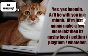Yes, yes hoomin.   Ai'll be with you in a minnit.  Ai'm just gonna make a few more lolz then itz gushy food / petting / playtiem / whateber.