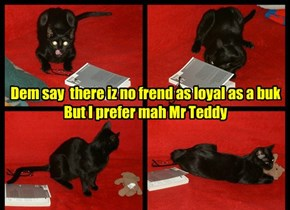 Dem say  there iz no frend as loyal as a buk But I prefer mah Mr Teddy