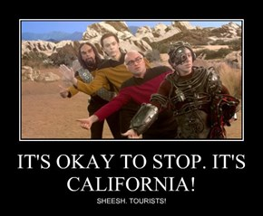 IT'S OKAY TO STOP. IT'S CALIFORNIA!