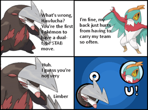 Hawlucha's Back Problems