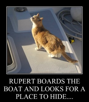 RUPERT BOARDS THE BOAT AND LOOKS FOR A PLACE TO HIDE....