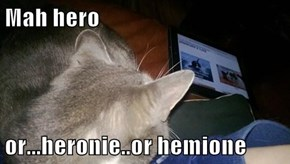 Mah hero  or...heronie..or hemione