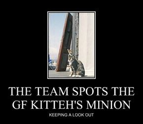 THE TEAM SPOTS THE GF KITTEH'S MINION