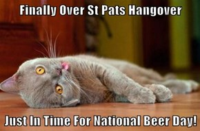 Finally Over St Pats Hangover  Just In Time For National Beer Day!