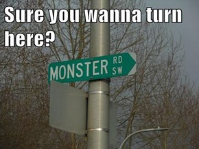 Sure you wanna turn here?