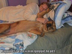 Happiness is a warm goggie to pet.