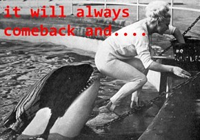 it will always comeback and....
