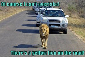 Of course I can't overtake!  There's a yellow lion on the road!