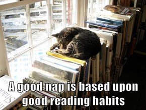 A good nap is based upon good reading habits