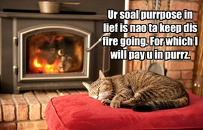 Ur soal purrpose in lief is nao ta keep dis fire going. For which I will pay u in purrz.