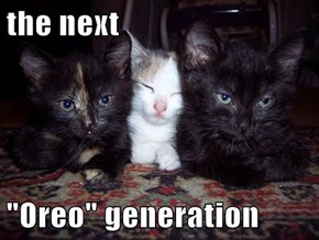 "the next   ""Oreo"" generation"