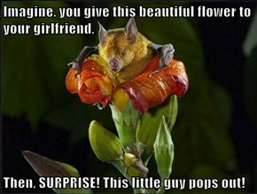 Imagine, you give this beautiful flower to your girlfriend,  Then, SURPRISE! This little guy pops out!