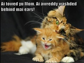 Ai towed yu Mom. Ai awreddy washded behind mai ears!