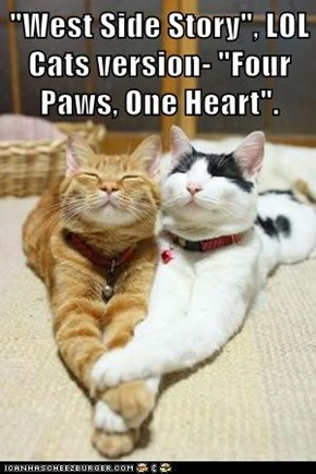 """West Side Story"", LOL Cats version- ""Four Paws, One Heart""."