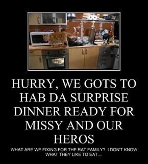 HURRY, WE GOTS TO HAB DA SURPRISE DINNER READY FOR MISSY AND OUR HEROS