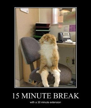 15 MINUTE BREAK