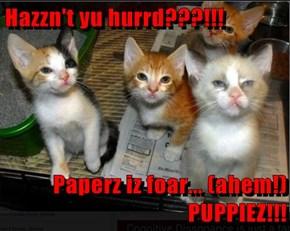 Hazzn't yu hurrd???!!!  Paperz iz foar... (ahem!) PUPPIEZ!!!