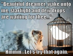 """Beautiful dreamer, wake unto me, starlight and dew drops are waiting for thee...""  Hmmm...Let's try that again."