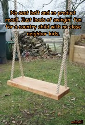 No seat belt and no product recall. Just loads of swingin' fun for a country child with no close neighbor kids.