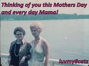 Thinking of you this Mothers Day and every day Mama!  luvmy8catz