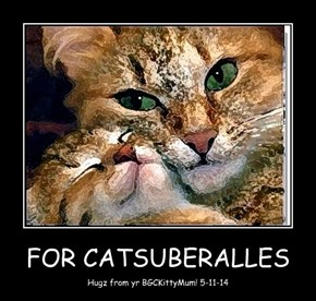 FOR CATSUBERALLES