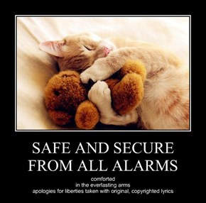 SAFE AND SECURE FROM ALL ALARMS
