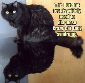 The  RorChat  test  is  widely  used  to diagnose  Crazy  Cat  Lady  syndrome.