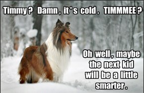 Winter Memories of Lassie