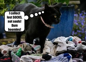 I collect lost SOCKS, not souls! Dum hoomins!