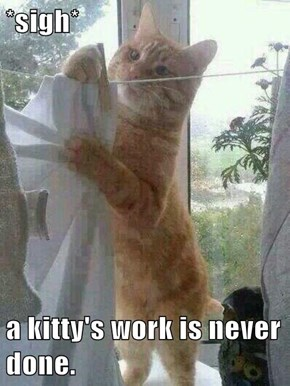 *sigh*  a kitty's work is never done.