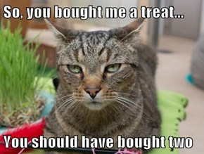 So, you bought me a treat...  You should have bought two