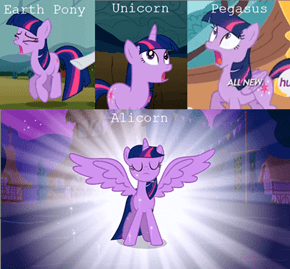 Twilight is most multi-cultural pony