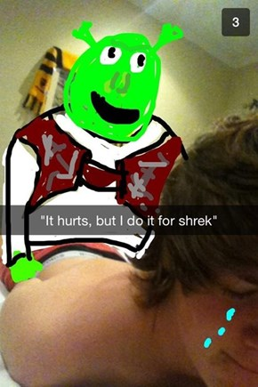 For the Love of Shrek
