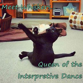 Meet Whiskers...  Queen of the Interpretive Dance