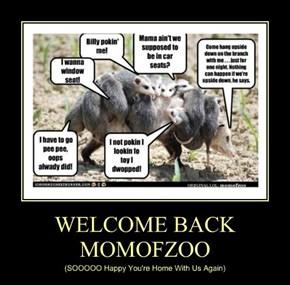 WELCOME BACK MOMOFZOO