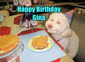 Happy Birthday  Gina