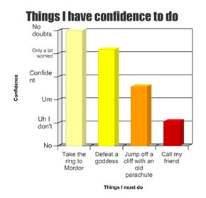 Things I have confidence to do