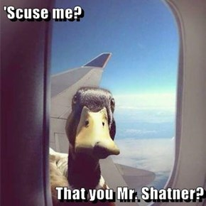 'Scuse me?   That you Mr. Shatner?