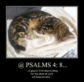 @ PSALMS 4: 8...