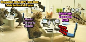 Meanwhile at the KKPS Exam Time Crisis Hotline Call Center