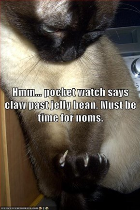 Hmm... pocket watch says claw past jelly bean. Must be time for noms.